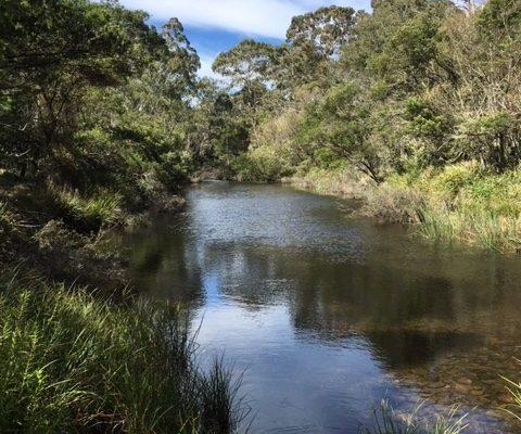 mongarlowe_river